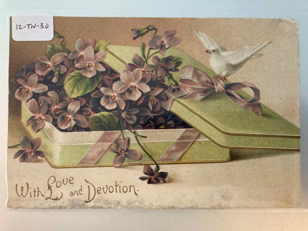 """An open box containing flowers; a dove is perched on the ribbon; caption """"With Love and Devotion"""""""