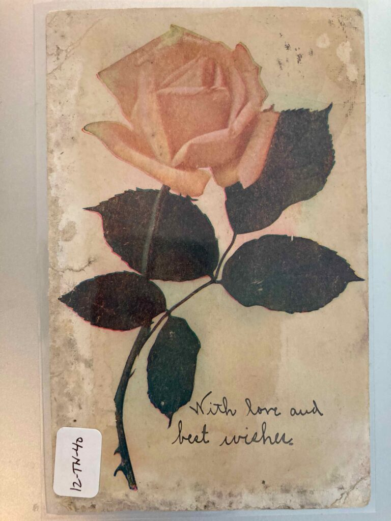 """A rose with thorns. Someone has handwritten """"With love and best wishes"""""""