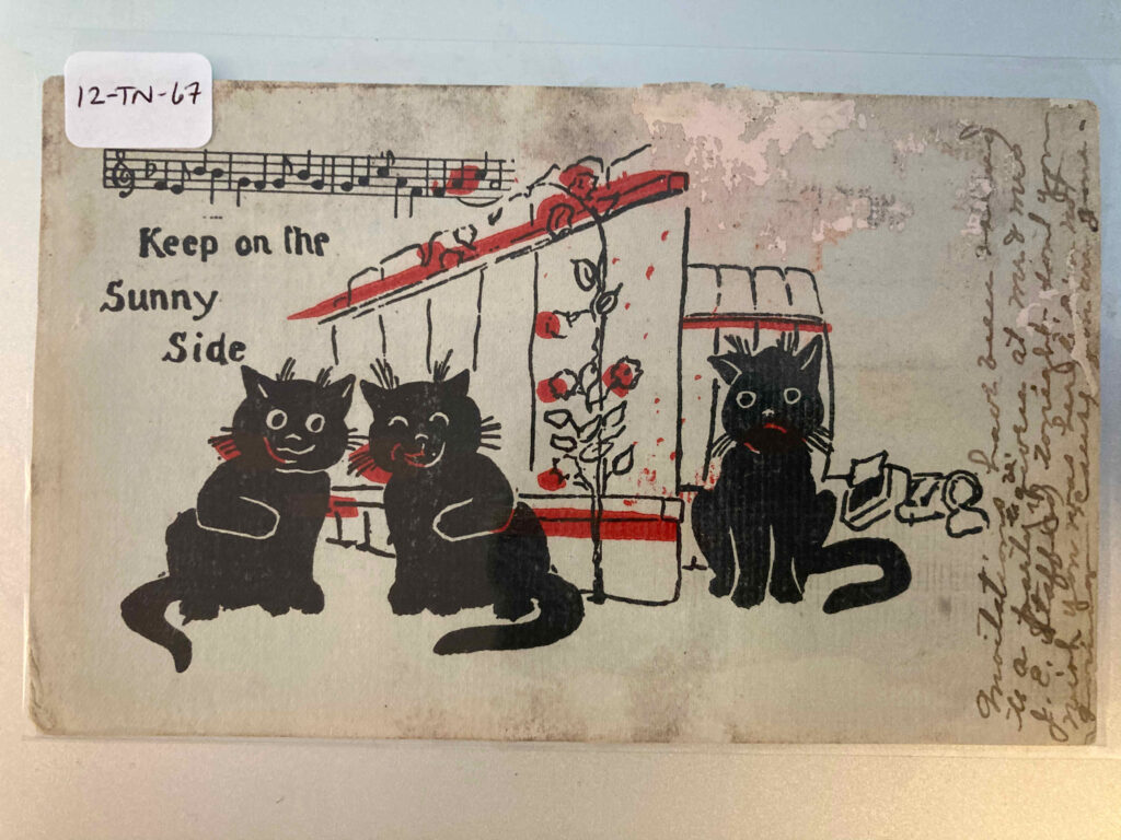 """Bar of music """"Keep on the Sunny Side""""; two cats on the garden side of a fence together with a third on the outside"""